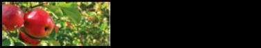 Gubbholmen Must & Grönt Logotyp